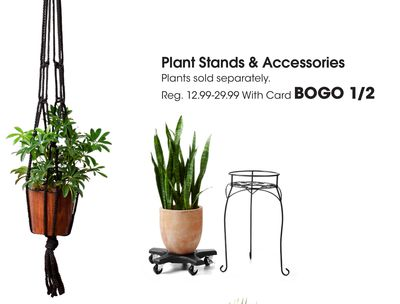 Plant Stands & Accessories