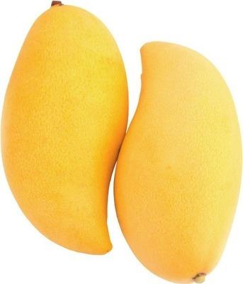 Ataulfo mango image
