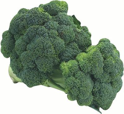 Fresh Cut Broccoli Crowns